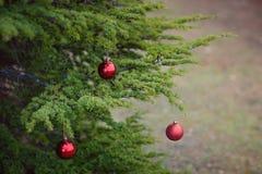 Christmas balls outdoors royalty free stock photos