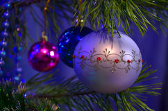 Christmas balls on pine tree Royalty Free Stock Photo
