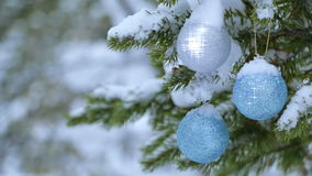 Christmas Balls are Shining on the Snow-Covered Spruce stock video footage