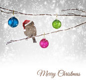 Christmas balls and sparrow bird on snowy branch Stock Photos