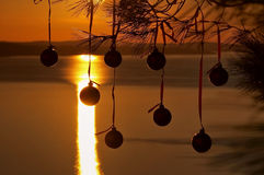 Christmas balls at sunset 1. Christmas balls hanging on pine tree in beautiful  sunset near the sea Stock Photos