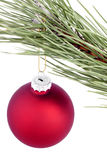 Christmas balls on a tree branch. Royalty Free Stock Photos