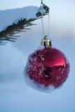Christmas balls on tree Stock Photo