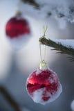 Christmas balls on tree Royalty Free Stock Photography