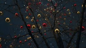 Christmas balls on the trees. Decoration stock video footage