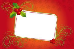 Christmas banner with mistletoe Stock Images