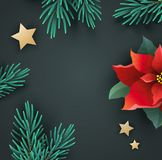 Christmas banner with poinsettia and fir branches Royalty Free Stock Photos