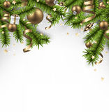 Christmas banner with spruce branches. Stock Image