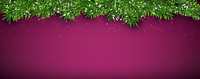 Christmas banner with spruce twigs Royalty Free Stock Photography