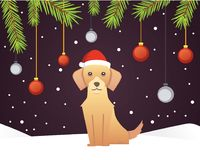 Christmas banner template with dog, balls, ribbons and decoration. New year tree branches background. Christmas banner template with dog, balls, ribbons and Stock Images