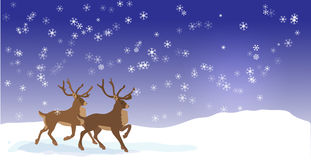 Christmas banner with Vector reindeers  Stock Images
