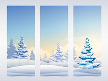 Christmas banners set with snowy fir trees Royalty Free Stock Image