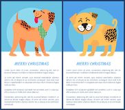 Christmas Banners with Weimaraner and Bullmastiff. Merry Christmas banners with weimaraner and bullmastiff. Friendly dogs on festive poster for winter holidays Royalty Free Stock Images
