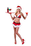Christmas Bartender Stock Images