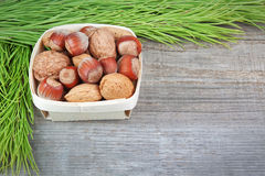 Christmas basket with wood, walnuts and almonds. Royalty Free Stock Photos