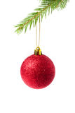 Christmas bauble hanging on a branch Royalty Free Stock Photography