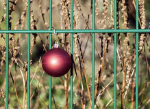 Christmas bauble hanging on a fence Stock Image