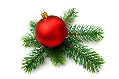 Christmas bauble and pine branches, isolated. Christmas red bauble and pine branches on white background Royalty Free Stock Photo