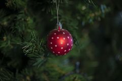 Christmas bauble, stars, trees, bell, balls, snowman, deer and various ornaments stock photos