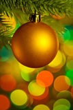 Christmas bauble on tree Stock Image