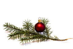 Christmas Bauble with young Spruce tree branch Stock Images