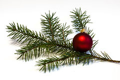 Christmas Bauble. With young Spruce tree branch Royalty Free Stock Image