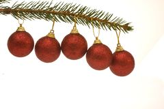 Christmas baubles. Five red Christmas baubles hanging on spruce twig Stock Photo