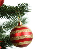 Christmas baubles on christmas tree on white Royalty Free Stock Photo