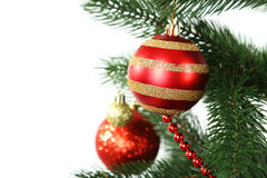Christmas baubles on christmas tree on white background Royalty Free Stock Photography