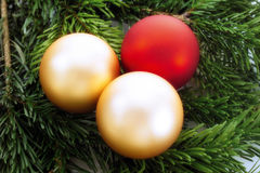 Christmas baubles on fir twig Stock Images