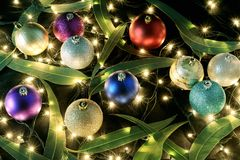 Christmas Baubles and Gum Tree Leaves. On Black Background stock image