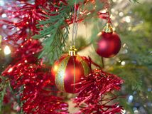 Christmas baubles hanging from tree stock photo