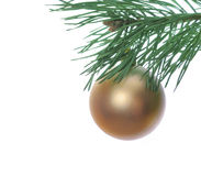 Christmas baubles and pine Royalty Free Stock Photo