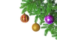 Christmas baubles and pine branch Royalty Free Stock Photography