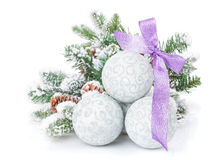 Christmas baubles and purple ribbon with snow fir tree Stock Photography