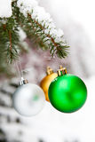 Christmas baubles on a snowy pine Stock Images