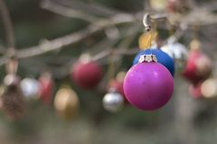 Christmas baubles in Southampton Old Cemetery royalty free stock photography