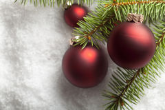 Christmas baubles and spruce tree on snow Stock Photography