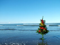 Christmas at the beach stock image