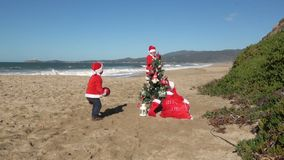 Christmas at the beach. Kids and dog in red Santa hats and shirts playing ball near tree in the sand on sunny day. Video HD slow motion stock video footage