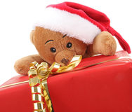Free Christmas Bear Stock Images - 16620424