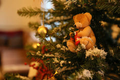 Christmas bear hanging on the branch of the Christmas Tree Stock Photography