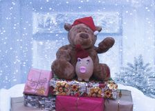 Christmas bear and pig symbol of 2019 sitting on a mountain of gifts royalty free stock photos