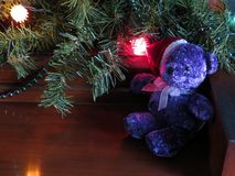 Christmas Bear. A small, purple bear in a Santa hat sits under the Christmas decorations stock photo
