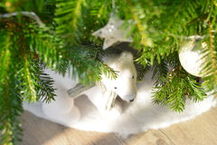 Christmas. Bear under the  tree royalty free stock image