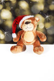 Christmas bear with white panel Stock Images