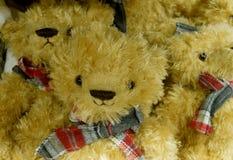 Christmas Bears Stock Image