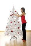 Christmas beauty Stock Image