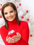 Christmas Beauty Royalty Free Stock Photography