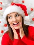 Christmas Beauty Royalty Free Stock Image
